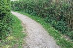 Photo 15: Exit from the park is a bumpy stone path.